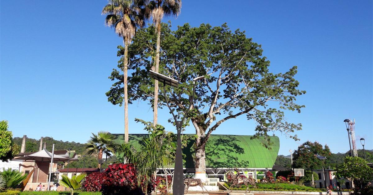 Alcaldía Municipal de San Luis de Gaceno